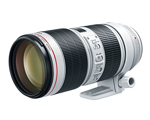Canon EF 70-200mm f/2.8L is III USM Lens for Canon Digital SLR Cameras (Best 2.8 Lens For Canon)