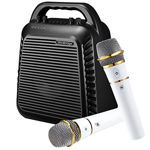 WinBridge Portable Microphone Amplifier Bluetooth