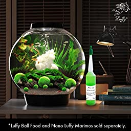 LUFFY Marimo Moss Balls - Aesthetically Beautiful & Create Healthy Environment - Eco-Friendly, Low Maintenance & Curbs Algae Growth - Shrimps & Snails Love Them