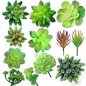 Thatswut 12 Assorted Faux Succulents- Artificial Succulent Plants Realistic Aloe- Fake Succulent Plants Realistic- Picks Succulent Stems - Fake Succulents -Artificial Succulents- Faux Plants 6