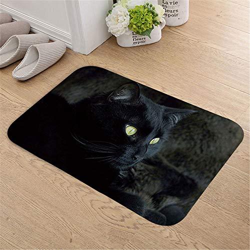 ExpertS Doormat Indoor Door Mat Flannel Soft Pets Cat and Dog Floor Mats Foot Pad Toilet Tapete Rugs for Living Room Burgundy 40cmx60cm