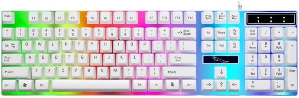 Colore : Black Man-hj Keyboard keycaps Wired Gaming Keyboard Mechanical Backlight Feel USB Keyboard 104 keycap Gaming Computer Keyboard Wired Keyboard