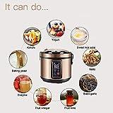6L Black Garlic Fermenter, Kimchi machine,Sweet