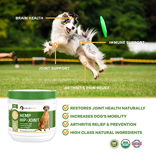 51ZTjvZgeDL - POINTPET Advanced Hip and Joint Supplement for Dogs with Organic Hemp Seeds and Oil, Best Glucosamine Chondroitin, MSM, Omega 3-6, Improves Mobility, Reduces Pain and Inflammation, 90 Soft Chews