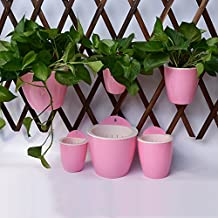 3pc Pack Creative Self Watering Wall Planter,Hanging Flower Pot,5-color & 3-size Plants Holder w/ Long Time Water Storage Design