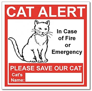 Pet Supplies Cat Alert Safety Warning Window Door Stickers In - Window alert decals amazon