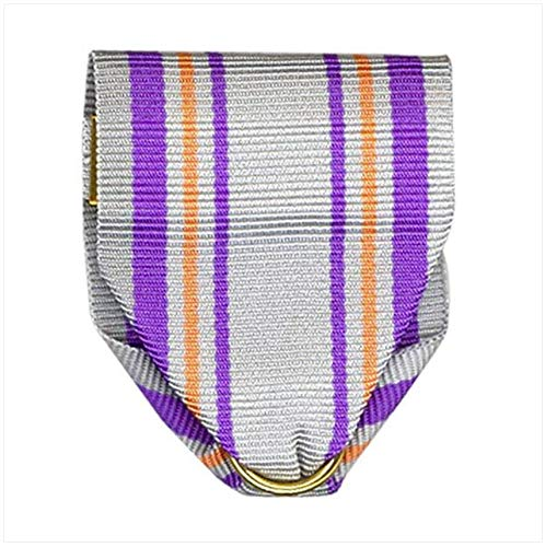 Vanguard Army ROTC Ribbon Drape N-4-4: AJROTC GUIDON Bearer PIN and Safety Catch ()
