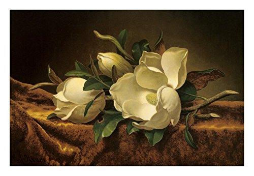 Global Gallery DP-117311-1624