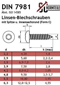 5,5x32 - SC7981 20 St/ück - Edelstahl A2 V2A - Form C Innensechsrund Antrieb TX - DIN 7981 Blechschrauben mit Linsenkopf ISO 14585 - mit Spitze