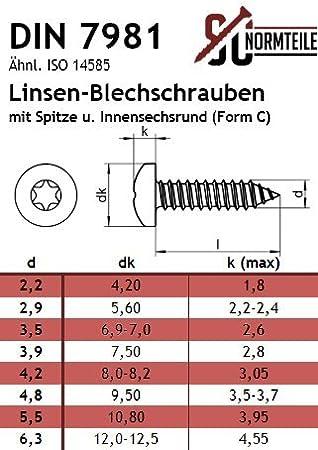 - DIN 7981 mit Spitze Innensechsrund Antrieb TX ISO 14585 Blechschrauben mit Linsenkopf - Form C - Edelstahl A2 V2A 10 St/ück - SC7981 3,9x25 -
