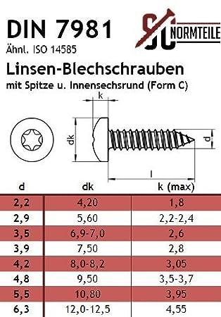 mit Spitze 5,5x32 - Blechschrauben mit Linsenkopf - Form C - DIN 7981 Innensechsrund Antrieb TX - - Edelstahl A2 V2A SC7981 ISO 14585 20 St/ück