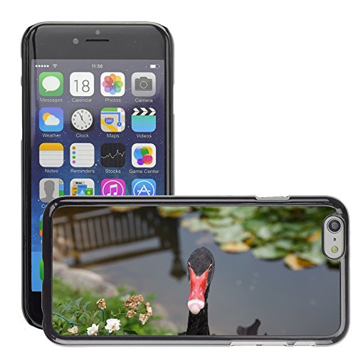 "Bild Hart Handy Schwarz Schutz Case Cover Schale Etui // M00135050 Black Swan Swan Tiere // Apple iPhone 6 PLUS 5.5"""