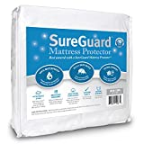 Graco Pack N Play Replacement Mattress Mini Crib SureGuard Mattress Protector - 100% Waterproof, Hypoallergenic - Premium Fitted Cotton Terry Cover for Portable Pack n Play - 10 Year Warranty