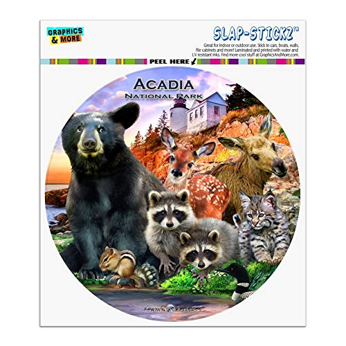 Graphics and More Acadia National Park Maine ME Animals Bear Racoon Deer Moose Automotive Car Window Locker Circle Bumper - Acadia Me Park National