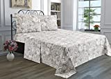 3 Piece Solid Bedsheet Set with 1 Pillow Case & 1 Deep Pocket Fitted & 1 Flat Sheet Wrinkle-Free Stain Resistant Extra Soft Breathable Hypoallergenic Brushed Microfiber Bedding Sheets Paisley-Twin
