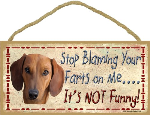 Blackwater Trading Brown Dachshund Stop Blaming Your for sale  Delivered anywhere in USA