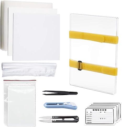 Amazon Com Wandic Flower Press Kit Set Of Clear Acrylic