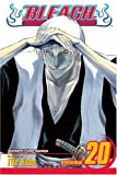 Bleach, Vol. 20: End of Hypnosis