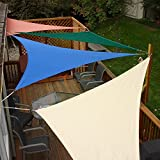 Sunshades Depot 8'x8'x8' Equilateral Triangle