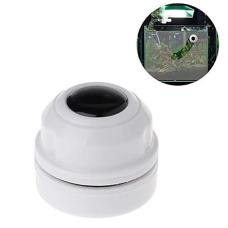Womdee - Imán magnético de Limpieza de Algas para Acuario o pecera, imán de neodimio