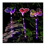 Cheap Bornran 3 Pack Butterfly Garden Solar Lights Outdoor LED Garden Stake Lights,Fiber Optic Butterfly Decorative Lights for Garden Patio Backyard (3, Butterfly+Purple Lighted Stake)