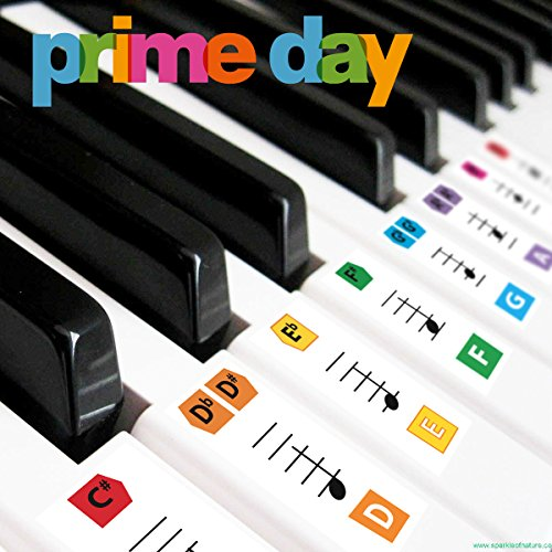 Reusable Large Color Piano Key Note Keyboard Stickers for Adults & Children's, FREE E-BOOK, Great for Beginners Sheet Music Book, Teacher Recommended to Learn to Play Faster ()