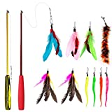 Famgee Feather Teaser Cat Toy - 2 Pcs Retractable Cat Toys Wand and 10 Replacement Refills Assorted Feathers Birds Worms Catcher with Bell, Interactive Teaser and Funny Exercise for Kitten Cats