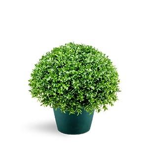National Tree 13 Inch Globe Japanese Holly Bush in Dark Green Round Plastic Pot (LJB4-13-1) 79