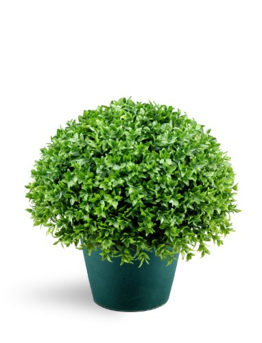 National Tree 13 Inch Globe Japanese Holly Bush in Dark Green Round Plastic Pot (LJB4-13-1) by National Tree Company