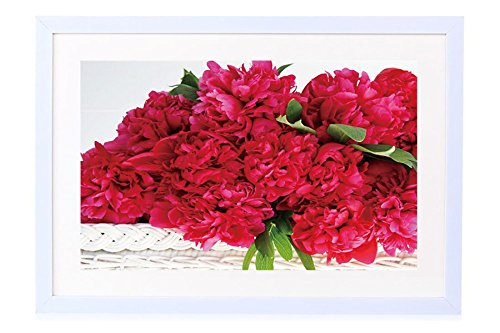 (Red Peonies - Art Print White Wood Framed Wall Art Picture 24x16 inches Framed)