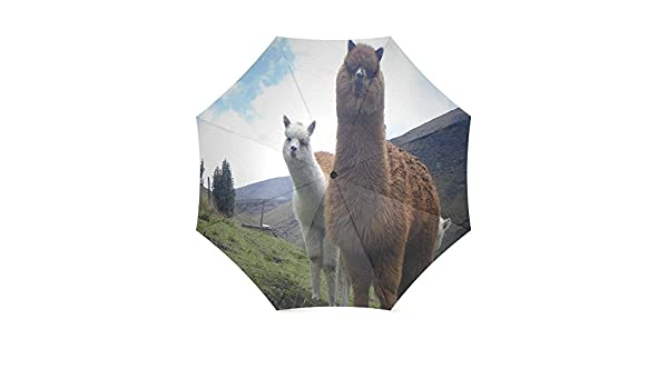 Custom Cute Alpaca Compact Travel Windproof Rainproof Foldable Umbrella