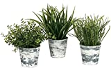 Sullivans Set of 3 Artificial Grasses Potted in Weathered Tin Pails