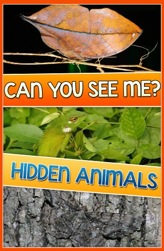 Children Books: HIDDEN ANIMALS (Amazing Book, Find the Animals) Search and Find Books (Age 4 - 12): Search and Find by [TheBrothers]