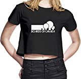 Boards Of Canada Womens Cropped Jersey T-Shirt Medium
