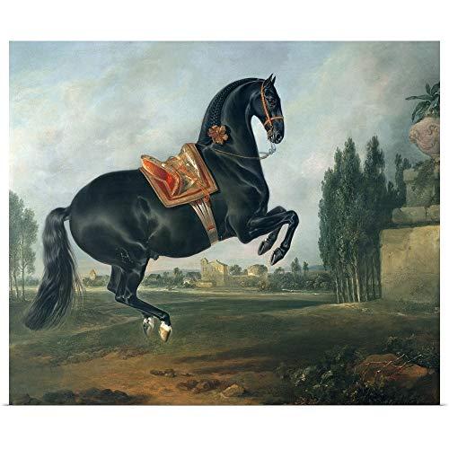 "GREATBIGCANVAS Poster Print Entitled A Black Horse Performing The Courbette by Johann (1672-1737) Hamilton 12""x10"""
