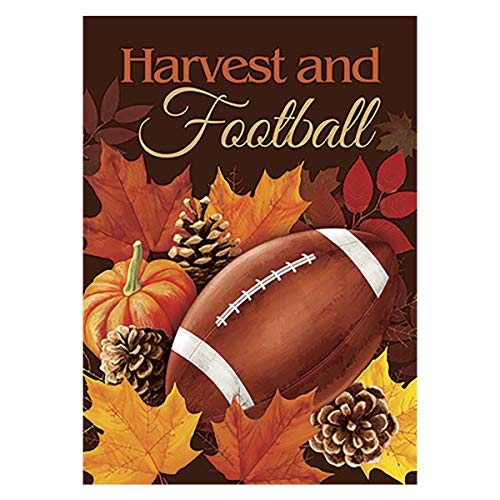 Morigins Football House Flag Fall Touchdown Sports Decorative Autumn Sports Game Day 28x40 Inch (House Flags 28 X 40)