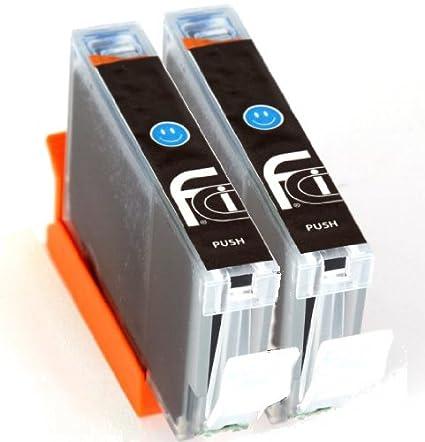 2 x Canon Cian CLI-551 XL FCI cartuchos de tinta compatibles ...