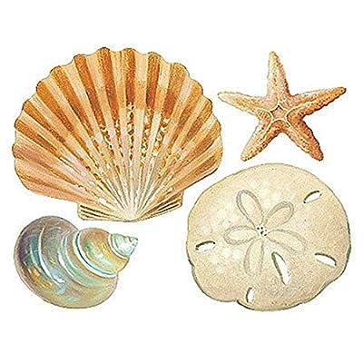 CHSGJY New Cute Seashells Wall Stickers 24 Decals Bathroom Decorations Shells Ocean Sea Beach DIY