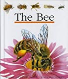The Bee (First Discovery) (First Discovery Series)