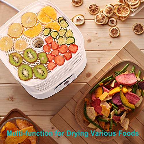 Maxkare Food Dehydrator Machine, Digital Multi-Tier Food Preservation Device with Temperature and Time Setting, Dried Fruits/Vegetables/Meat Maker, 5 Removable and Stackable Drying Trays, 210-260 watts, BPA Free by MaxKare (Image #4)