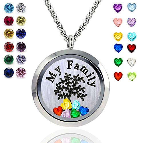 - YOUFENG Floating Living Memory Locket Pendant Necklace Family Tree of Life Necklace All Birthstone Charms Include (Polished My Family Locket)