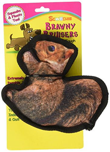 scoochie-pet-products-513-brawny-bruisers-scoochie-squirrel-8