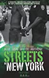 img - for Streets of New York Volume 3 book / textbook / text book