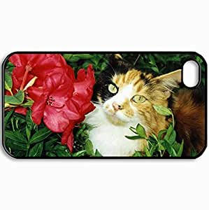 Customized Cellphone Case Back Cover For iPhone 4 4S, Protective Hardshell Case Personalized Cats 1999 1 Black