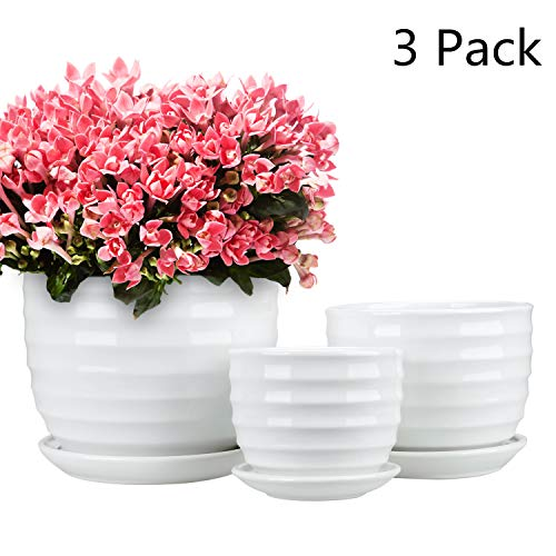 Encheng Round Modern Ceramic Garden Flower Pots Small to Medium Sized, White Planter Pots 3 ()