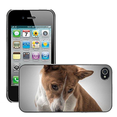 Bild Hart Handy Schwarz Schutz Case Cover Schale Etui // M00133640 Hund Basenji Hundbild Entschuldigen // Apple iPhone 4 4S 4G