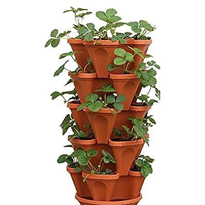 Mr. Stacky 5-Tier Strawberry Planter Pot, 5 Pots : Garden & Outdoor