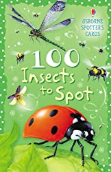 100 Insects to Spot (Usborne Spotter's Cards)