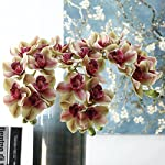 Pannow-Artificial-Orchid-Flowers-3D-Real-Touch-Fake-Silk-Orchid-Bridal-Wedding-Bouquet-for-Home-Office-Party-Hotel-Garden-Decoration-Display-Vase-Not-Included-2Pcs-Green