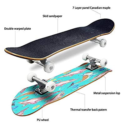 Classic Concave Skateboard Watercolor Lovely Dolphins Seamless Pattern on Background with Rings Longboard Maple Deck Extreme Sports and Outdoors Double Kick Trick for Beginners and Professionals : Sports & Outdoors